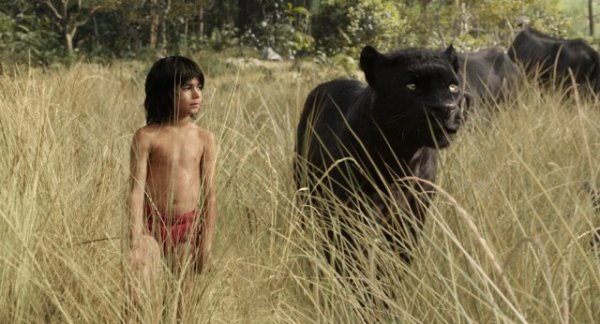 The Jungle Book Picture 2